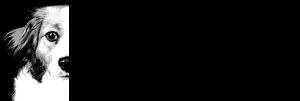 Logo_1_3 Kopie